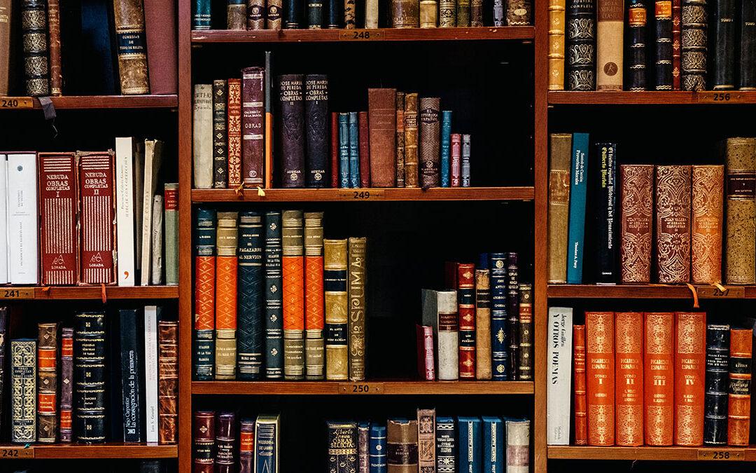 Commentaire à propos des livres de Ken Follet se déroulant au Moyen-âge.